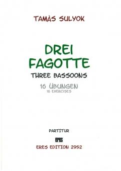 Drei Fagotte (16 Übungen)